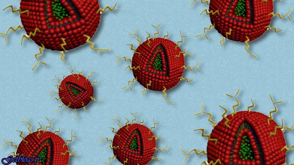 نانوذرات دارو رسان بروزترین راهکار مبارزه با سرطان مغز