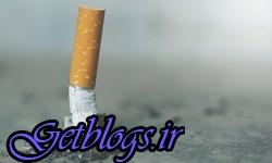 «سیگار» در بروز بیش از ۵۰ نوع سرطان تاثیرگذار است