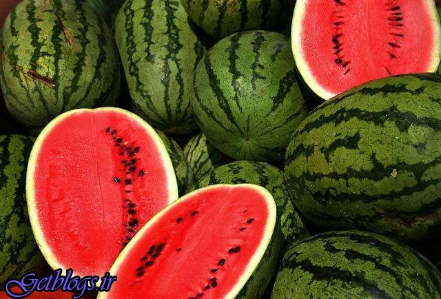 قیمت ۱۴۶ درصد! , صادرات هندوانه ۵۰درصد زیاد شد