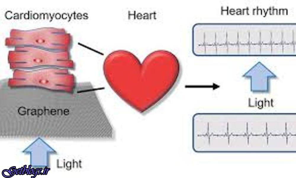 کنترل سلول های قلب از راه دور