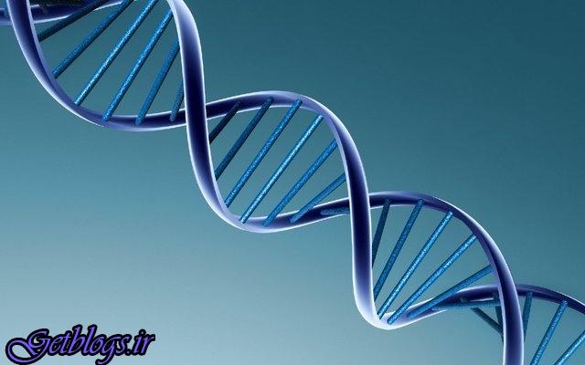 مهار سرطان ریه تنها با از بین بردن یک ژن کلیدی
