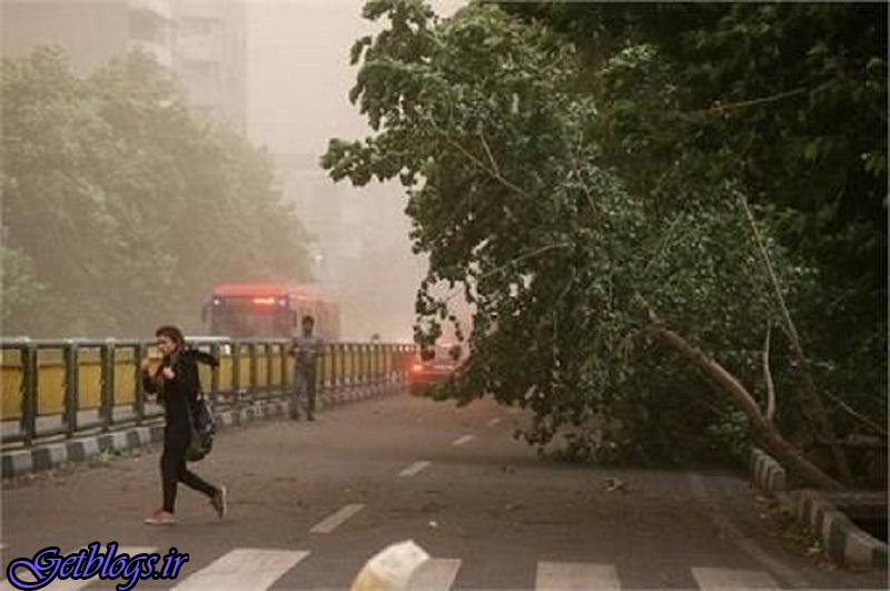 رگبار و وزش باد شدید در بعضی از استانها / هشدار هواشناسی